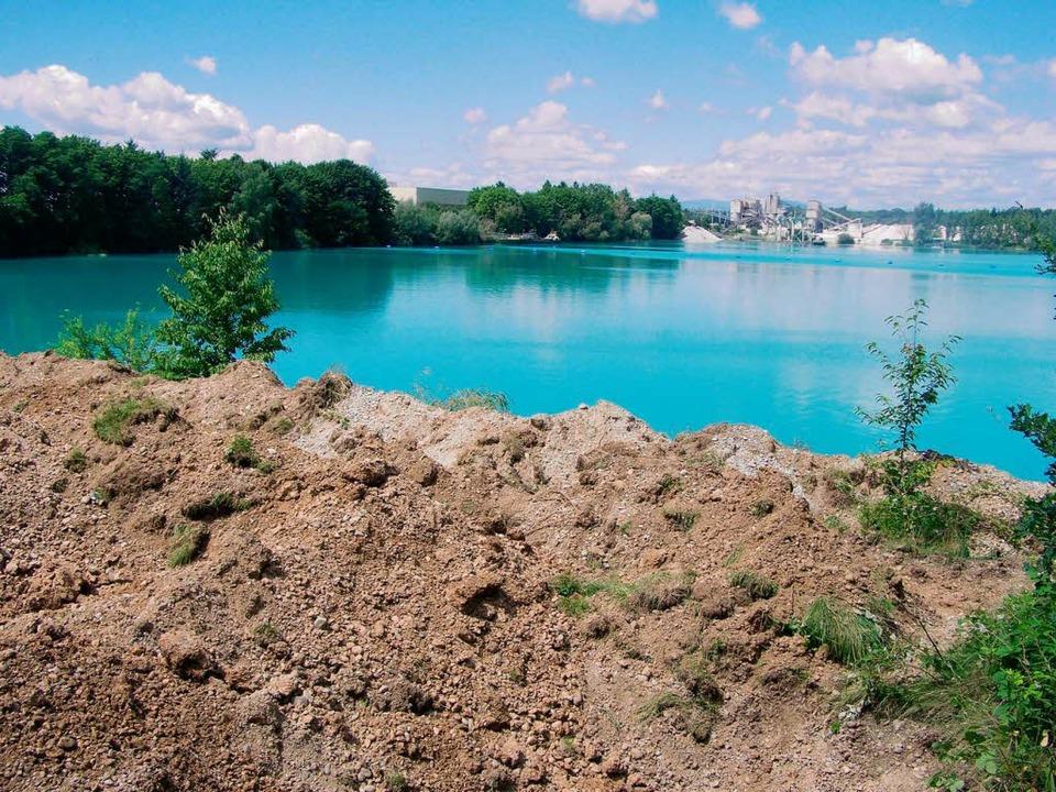Baggersee niederrimsingen