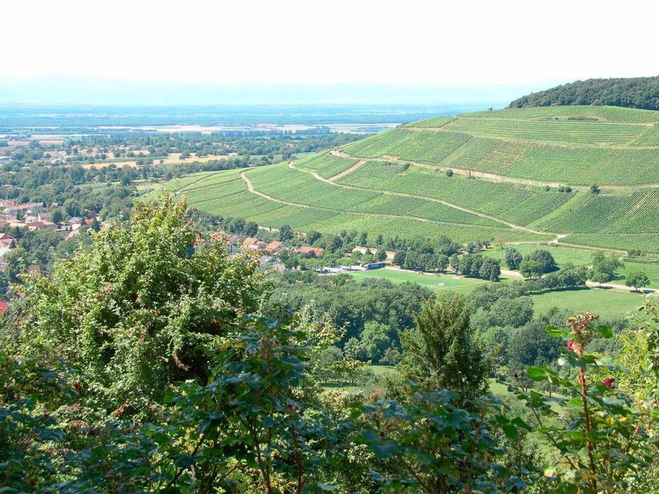 Die in Hügel und Reben gebettete Lands...räflerlandes lockt viele Feriengäste.   | Foto: Umiger