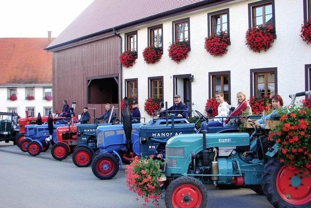 Stolz auf ihre hochglanzpolierten Oldtimer-Traktoren