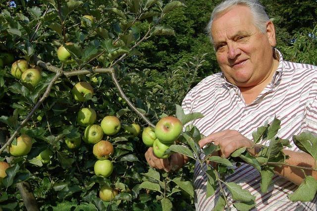 Nicht in saure Äpfel beißen