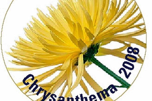 Erstmals ein Anstecker für die Chrysanthema