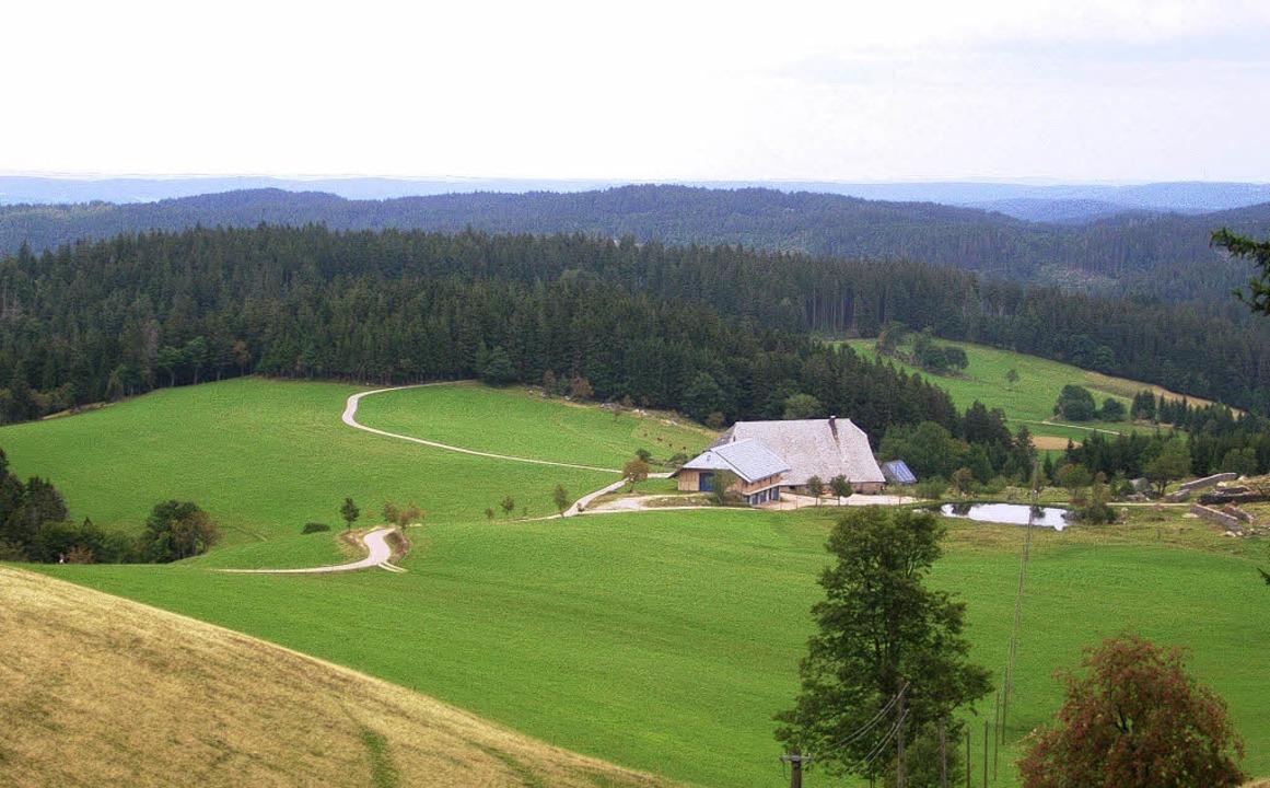 """Blick vom Gasthaus """"Zur Schweden...;Schänzlehof"""" von Anton Hettich     Foto: Bernd Fackler"""