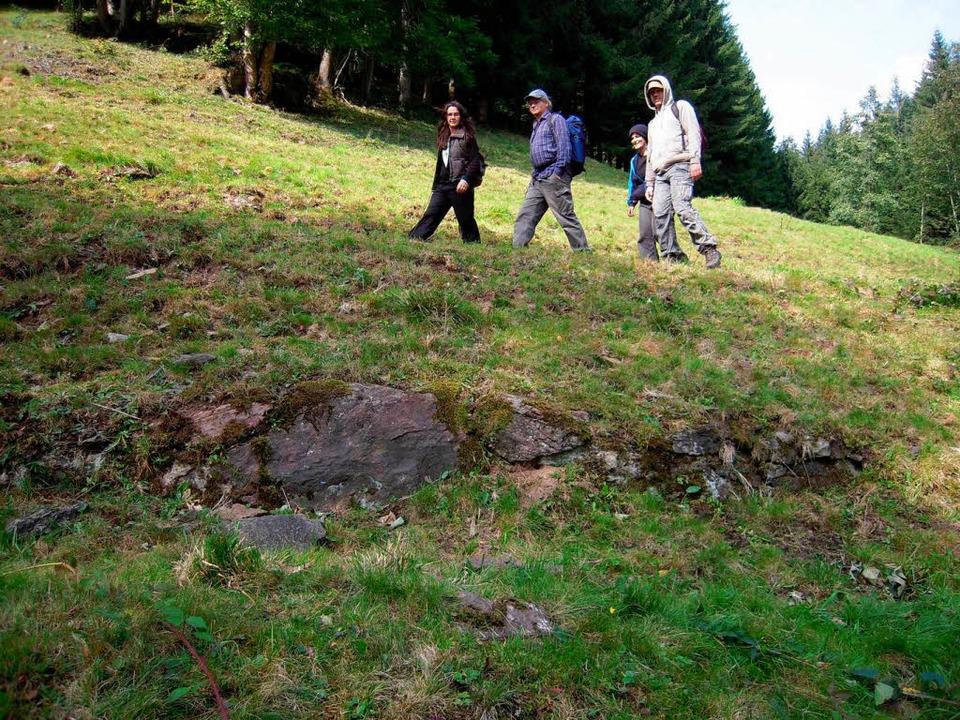 Es gibt sie noch: Sichtbare Spuren des Urgrabens am Kandel im Gelände.  | Foto: Karin Heinze