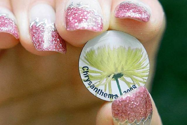 Am Samstag beginnt die 11. Chrysanthema