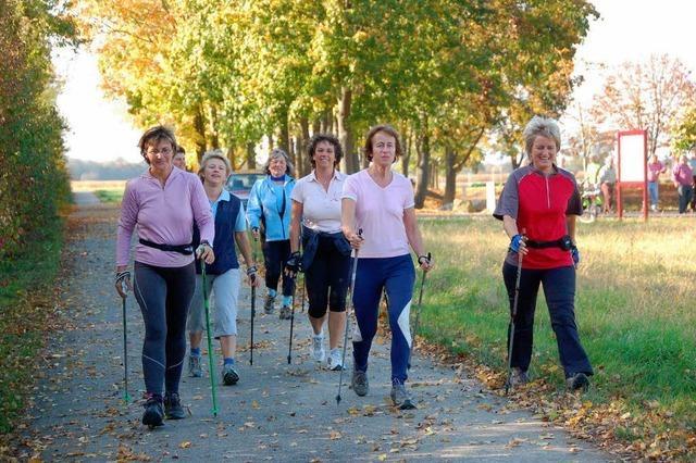 Neue Nordic-Walking-Strecke