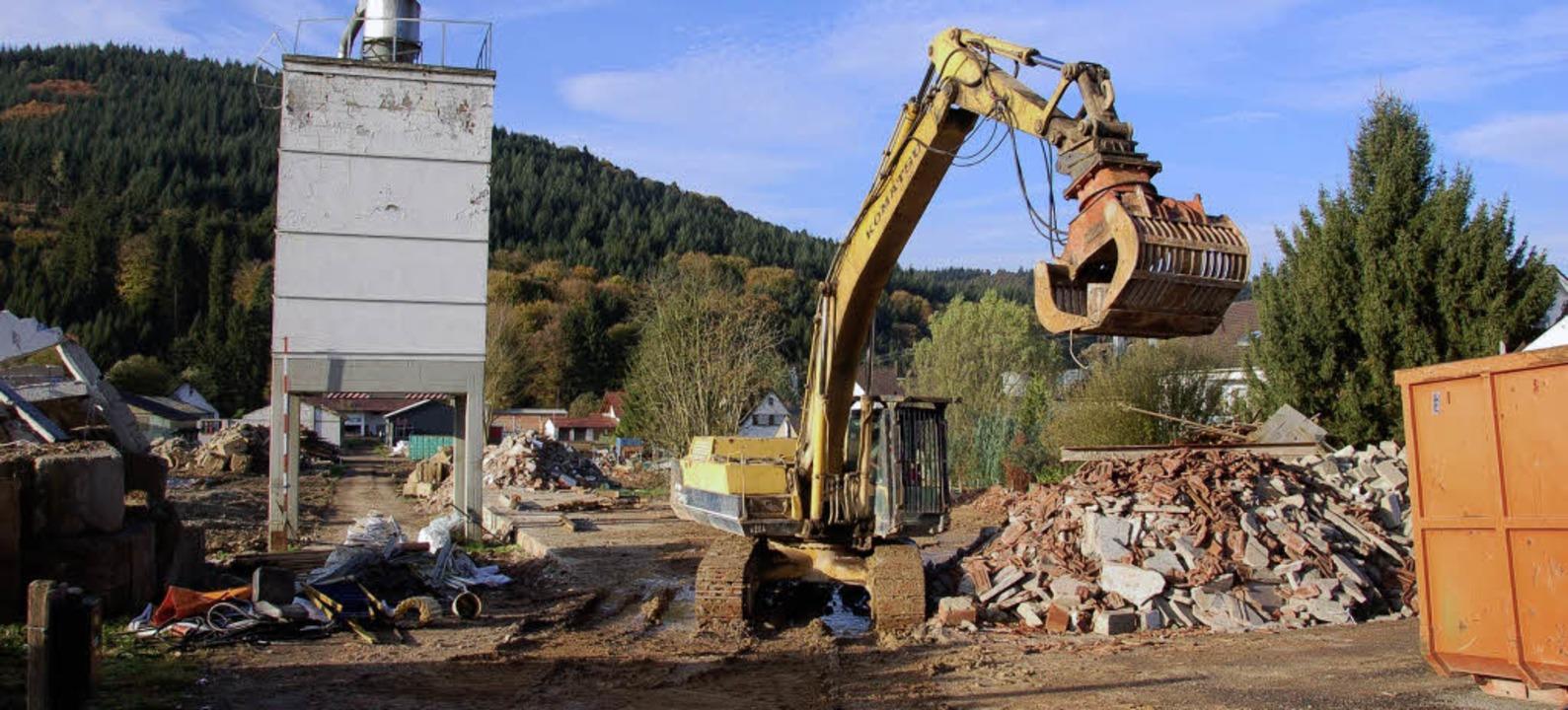 Nach dem Abriss der Firmengebäude soll...uf dem Areal eine Wohnbebauung geben.     Foto: BZ