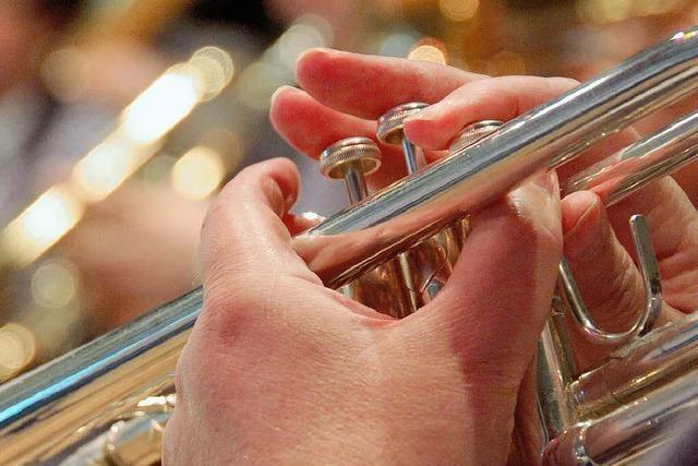 Vorstand der Blasmusiker im Amt bestätigt