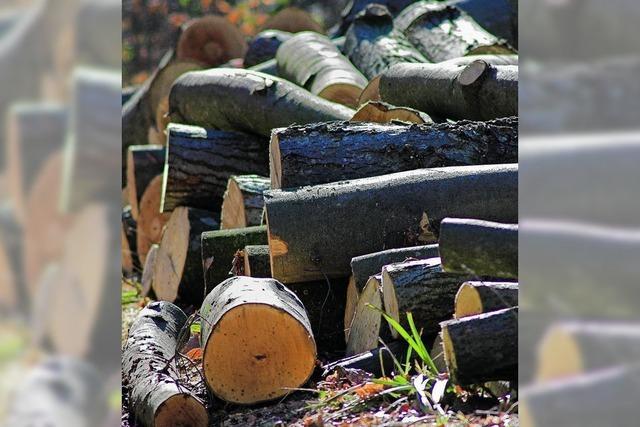 Nur Brennholz lässt sich gut verkaufen