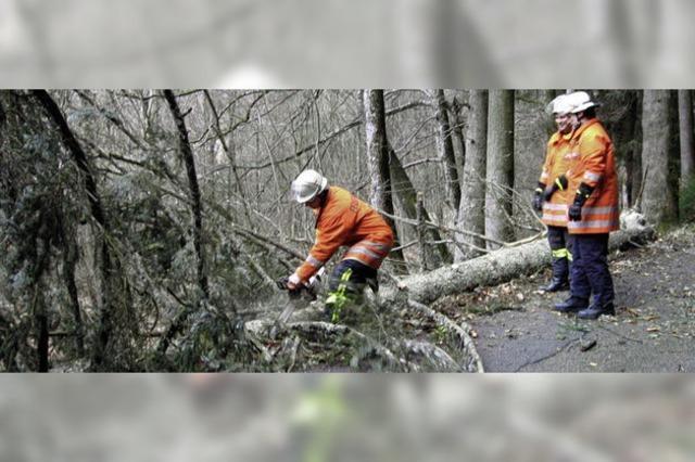 Unwetter halten Feuerwehr auf Trab