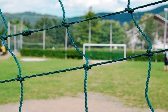 Studie sieht Bedarf für Schulsport und Vereine