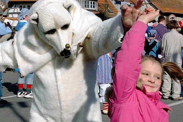 Kein Geld – Narrenzunft Eisbären löst sich auf