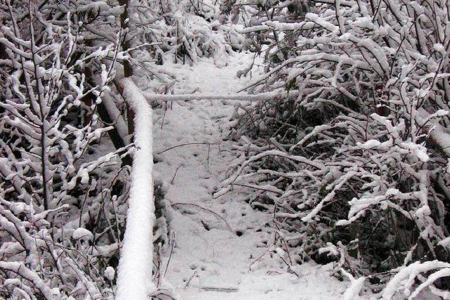 Schneechaos ist ausgeblieben