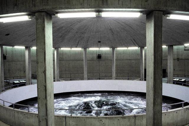 Finanzkrise treibt Wasserpreis hoch
