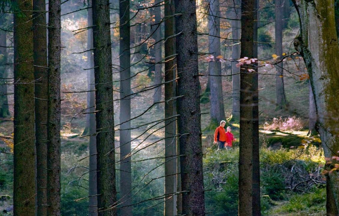 Der Hotzenwälder Ortsverein von Bündni...twendigkeit eines weiteres Kraftwerks.  | Foto: dpa