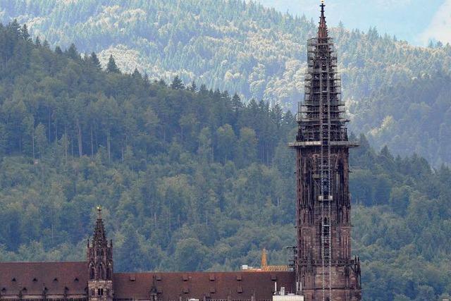 Zwist um Satzung im Münsterbauverein