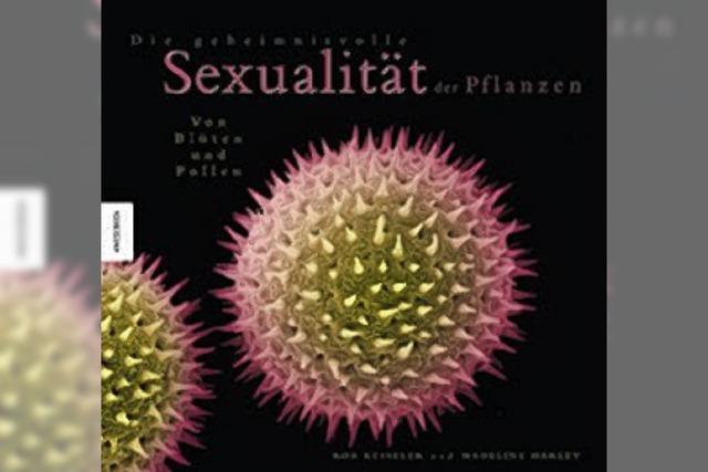 BILDBAND: Nacktsamer und Jungfernzeugung
