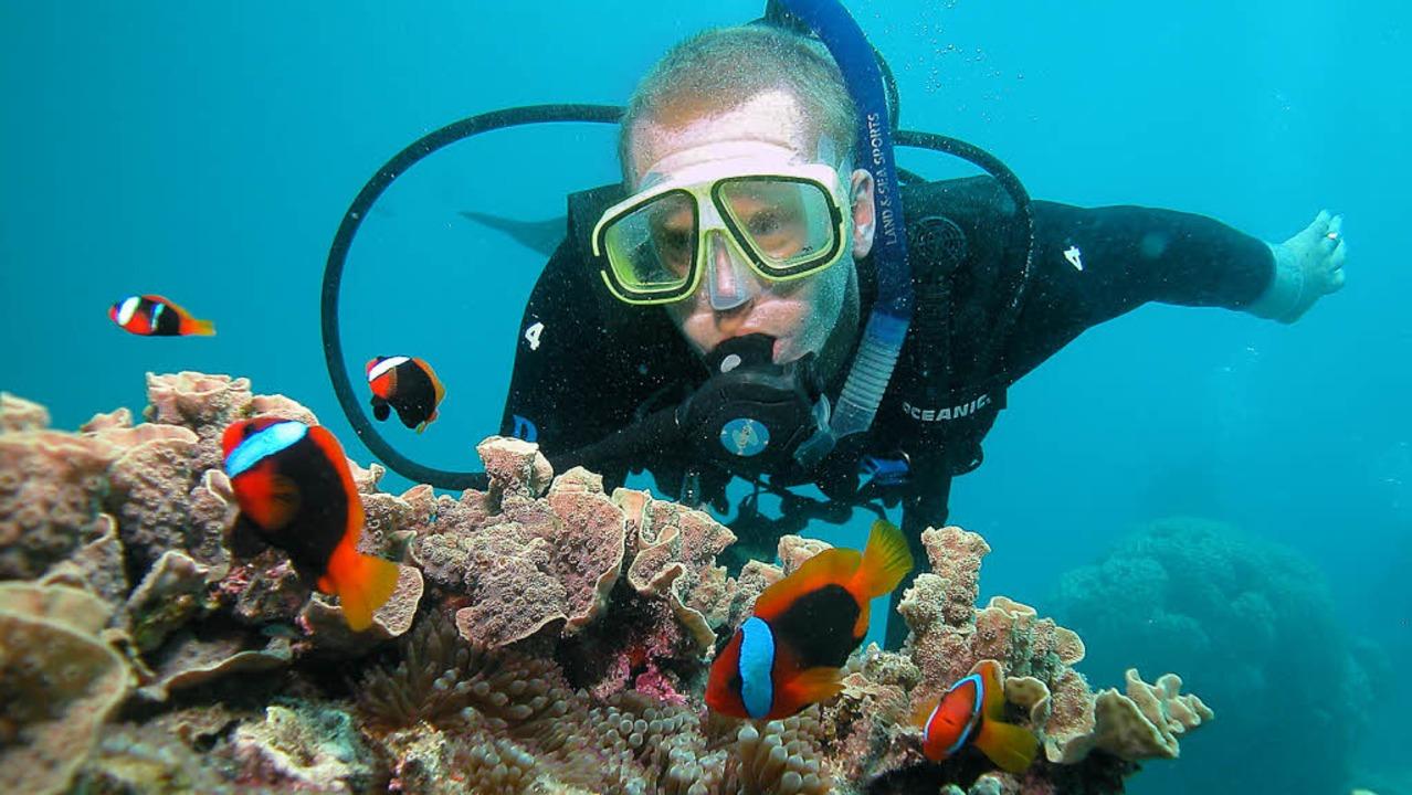 Zum Greifen nah: auf du und du mit Nemo   | Foto: stephan brünjes