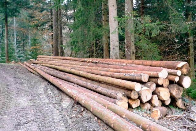 Windener Waldwirtschaft brachte gute Preise