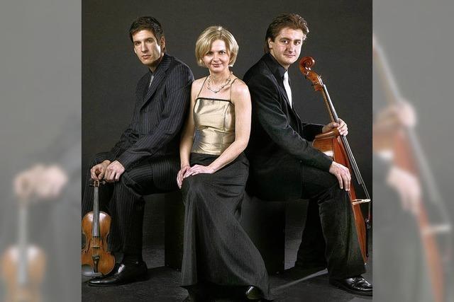 Preisgekröntes Trio musiziert im Rosenhof