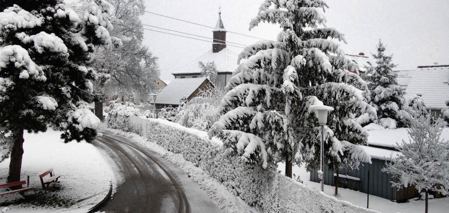 Winter    Foto: Petra Müller