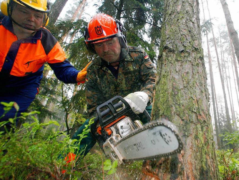 Der Wald braucht Pflege mit der Kettensäge.  | Foto: Michael Urban