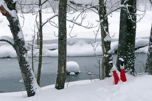 Land versinkt im Schnee
