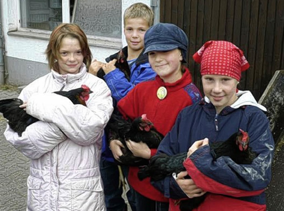 Ungewohnte Kuscheltiere: schwarze Hühner    | Foto: PRIVAT