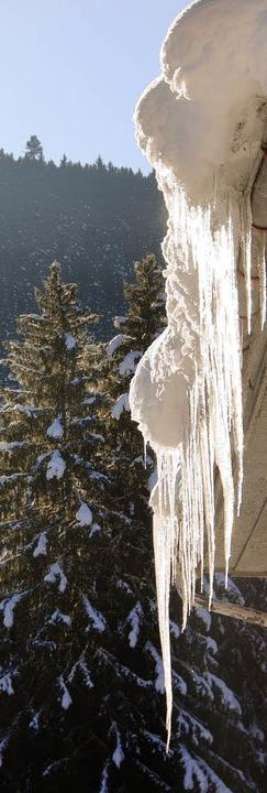 winter    Foto: peter stellmach