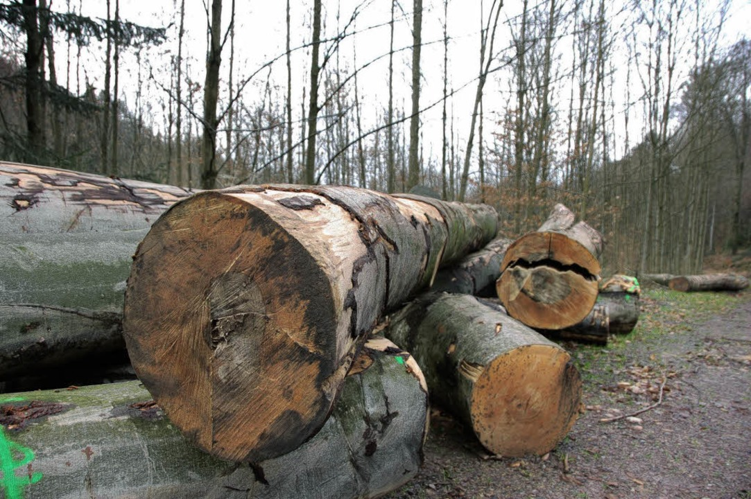 Buchenholz lässt sich derzeit  kaum verkaufen.   | Foto: peter bomans