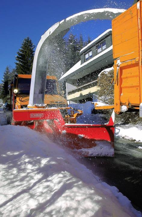 winter  | Foto: peter stellmach