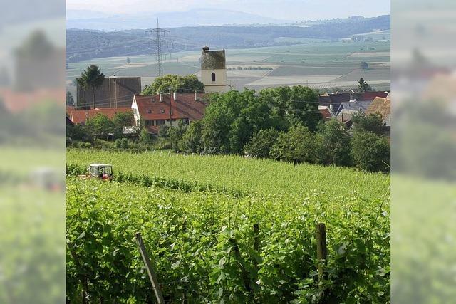 Subventionen aus Brüssel für die Landwirte weiterhin unverzichtbar