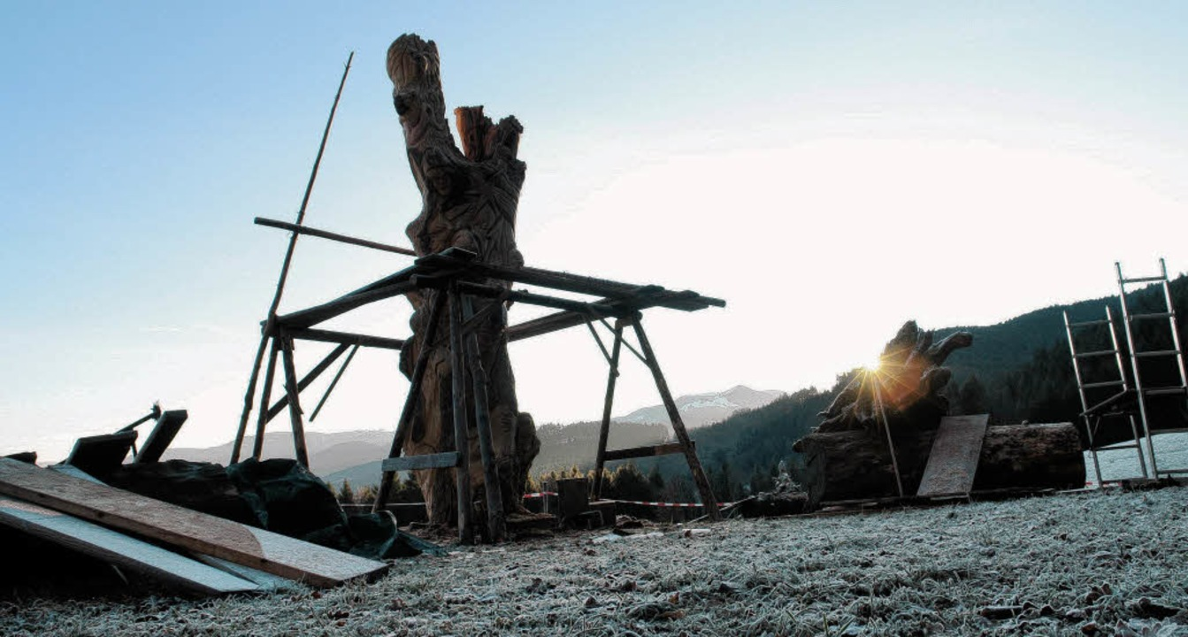 Die ersten Sonnenstrahlen des Tages fa...n der Mitte der mächtige Bergahorn      | Foto: Thomas Rees