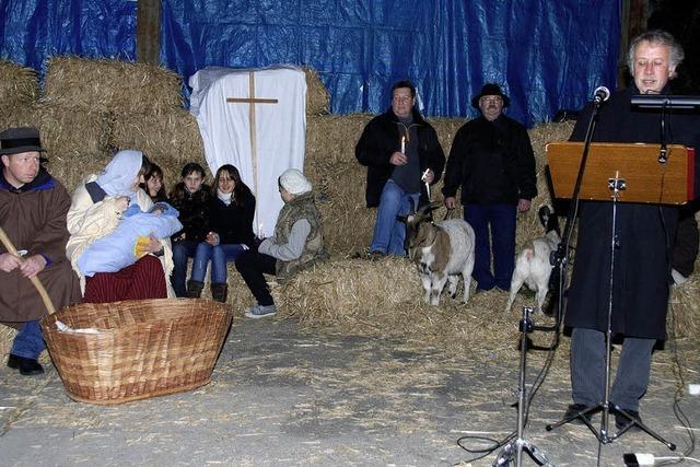 250 Christen feiern Weihnachtsgottesdienst am Stall