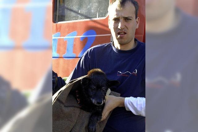 Wehr rettet kleinen Hund aus dem Klemmbach