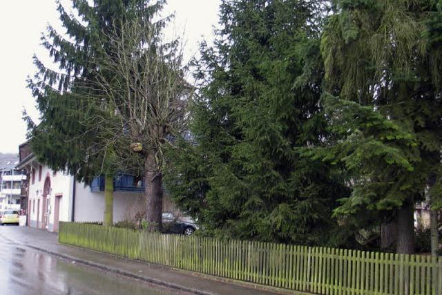 Bauplatz statt Grünfläche