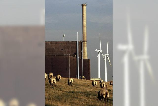 Schwung für die Ökoenergie