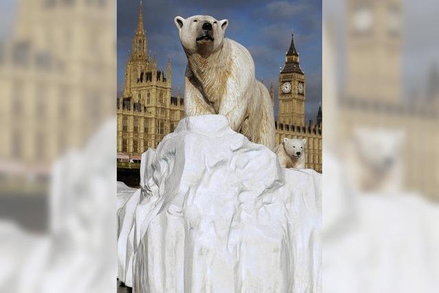 Bilder des Tages: EISBÄREN IN LONDON?