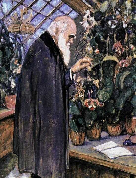 Evolutionstheoretiker im Gewächshaus: der alte Darwin auf einem Gemälde   | Foto: ullstein