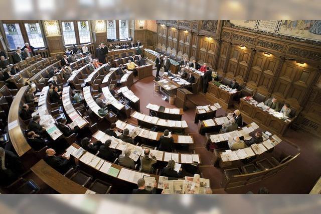 Grünes Bündnis zieht vor Gericht