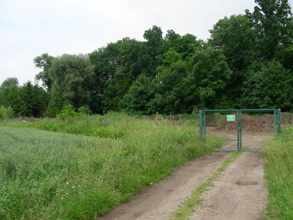 Die frühere Grünschnittdeponie soll al...eimer Gewerbegebiets genutzt werden.    | Foto: schöneberg