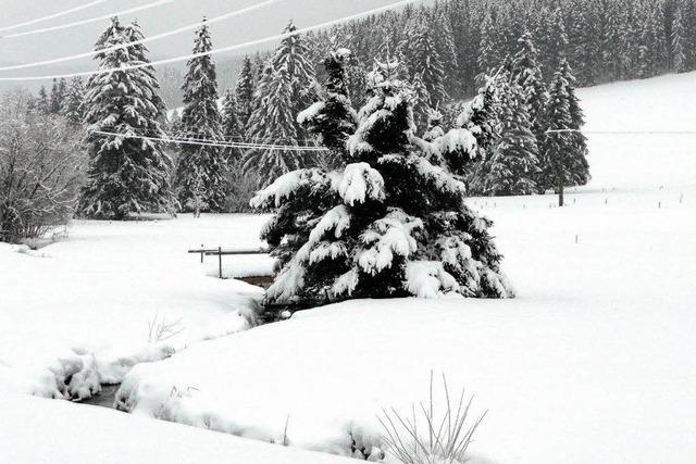 Mal wieder ein richtiger Wintermonat
