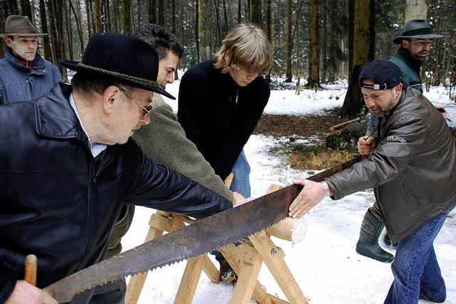 Ansturm auf Buchenpolder und Brennschichtholz