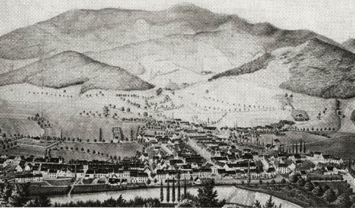 Gesamtansicht von Waldkirch um 1855.   | Foto: Elztalmuseum Waldkirch B 0423