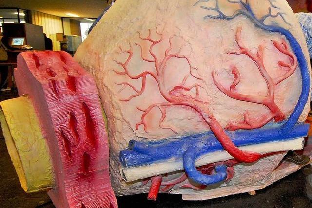 Krebstest der Prostata liegt meist daneben