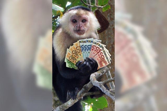 Gib dem Affen Zaster