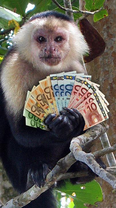 Können auch schlecht mit Geld umgehen: Kapuzineraffen   | Foto: dpa/bz