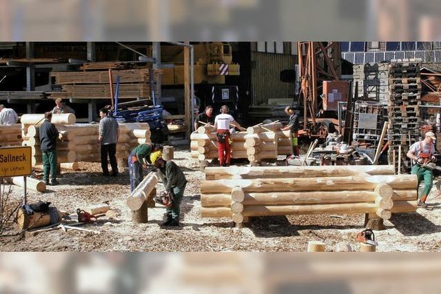 Rustikale Blockhäuser sind gefragt