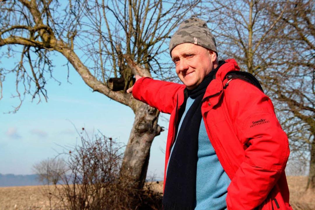 Christoph Stange zeigt auf eine Brutrö...er Streuobstwiese in March-Hugstetten.  | Foto: Silvia Faller