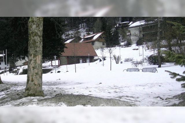 Riesenosterei bleibt im Schnee stecken