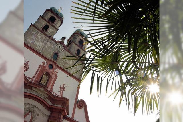 APROPOS: Endlich wieder Palmenflair